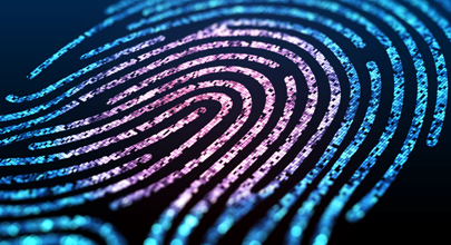 Large digital fingerprint