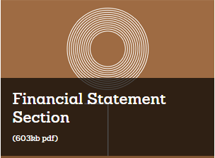 Financial Statement Section