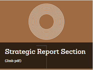 Strategic Report Section